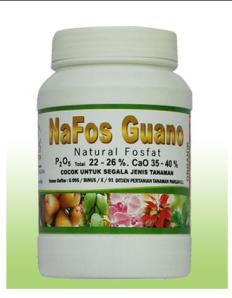 NaFos