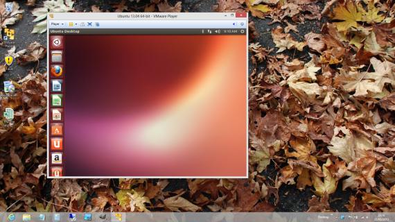 VMware-Ubuntu 13.04