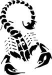 black_scorpion_clip_art_thumb