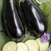 Terrong - aubergine