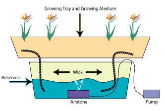 marijuana-wick-grow-systems