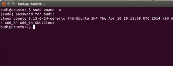 VersiUbuntu