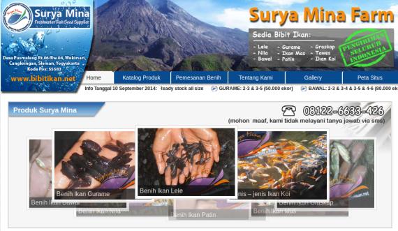 SuryaMiniFarm
